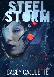 Steel Storm Cover